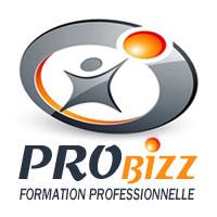Probizz, formation professionnelle